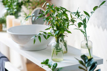 Element Of The Modern Bathroom. The Washbasin Is Decorated With Indoor Plants.