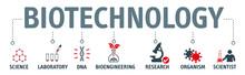 Modern Icons Set Of Biotechnol...