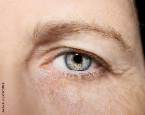Obraz A beautiful insightful look eye. Close up shot. The eye of an elderly woman - fototapety do salonu