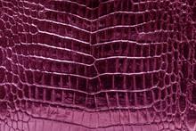 Pink Crocodile Skin Glossy Shine Background Texture.