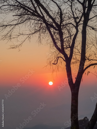 Mountain view morning silhouette of dry tree branches with colorful red sun light in the sky background, sunrise at Kew Lom View Point, Huai Nam Dang National Park, Chiang Mai, Thailand.