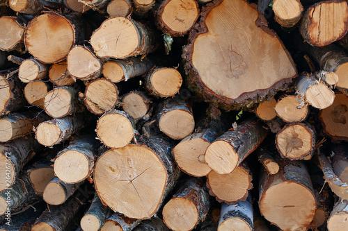 Aluminium Prints Firewood texture Pile of a birch firewood