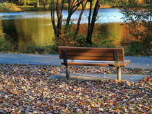 Park Bench In Fall - Seat By A Pond In Autumn With Fallen Leaves.
