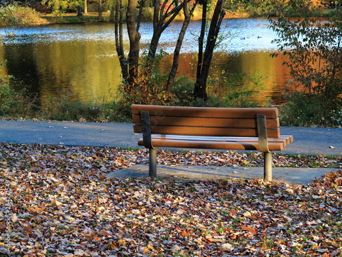 Fotografie, Obraz  Park Bench in Fall - Seat by a pond in autumn with fallen leaves.