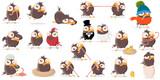 Fototapeta Fototapety na ścianę do pokoju dziecięcego - funny cartoon bird clip-art collection