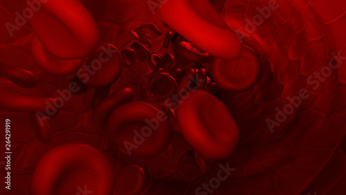 Photo  vene im querschnitt mit erythrozyten oder roten blutkörperchen als visualisierun