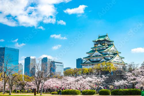 Fotografia 春の大阪城