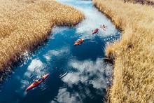 Group Of People In Kayaks Amon...