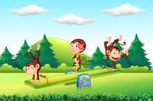 Monkey At The Playground
