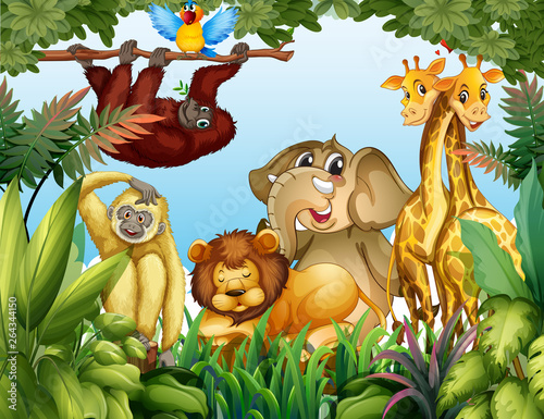 Poster Kids Wild animal in jungle