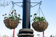 Colorful Flower Pots Hanging L...