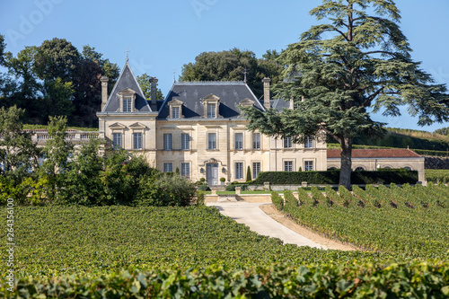Carta da parati Vineyard of Chateau Fonplegade - name (literally fountain of plenty) was derived from the historic 13th century stone fountain that graces the estate's vineyard