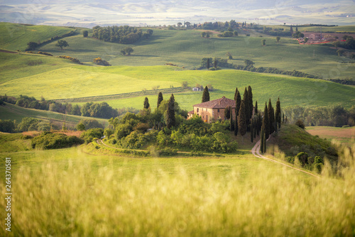 Poster Melon Country farm among grass hills in Tuscany, rural landscape. Countryside farm, cypresses trees, green field,Italy, Europe.
