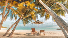 Wonderful Beach Scenery, Palms And Sun Beds With Sea View. Tropical Beach Landscape As Summer Vacation And Holiday Resort Template