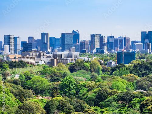 新緑と都市風景 東京(港区周辺)