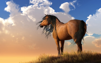 A horse with a light brown