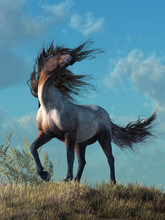 A Wild Horse Trots Over A Grassy Hill On A Warm Summer Day. As It Reaches The Crest Of The Hill, The Wind Blows Picking Up The Hairs Of The Animal's Mane And Tail. 3D Rendering