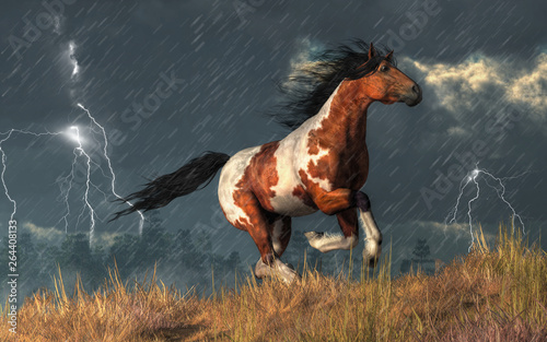 Thunder booms and lightning cracks as a wild pinto coated mustang gallops up a grassy hillside Wallpaper Mural