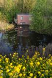 Houseboat hidden between bushes in springtime. - 264426158
