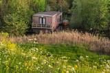 Houseboat hidden between bushes in springtime. - 264426181