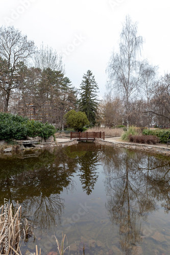 Fototapeten Natur Japanese garden in Siofok