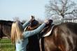Girl with horse putting on saddle to go horseback riding.