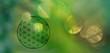 Vorlage Blume des Lebens in lichtvoll-vegetativem Ambiente als Symbol für natürliches Wachstum und vollkommene Gesundheit