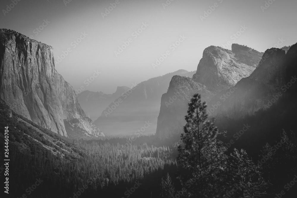 Fototapety, obrazy: Yosemite National Park