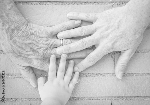 Three hands together, grandmother (elderly woman), mother, daughter, granddaughter Wallpaper Mural