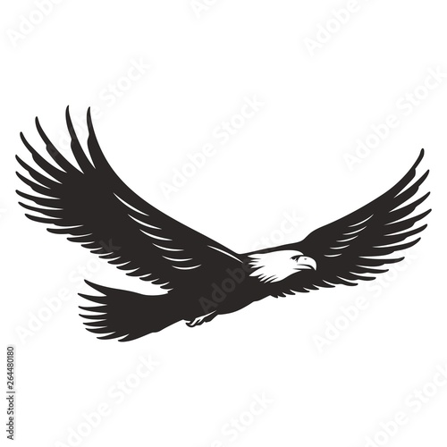 Fotografie, Tablou  Monochrome flying eagle template