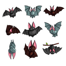 Set Of Cute Colorful Bat In Different Poses Or Flying Mode