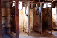 Squalid Shower Stalls Used By ...