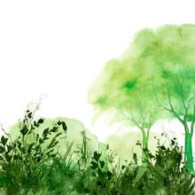 Watercolor Tree Of Green Color. Autumn Countryside Landscape. Bush, Tree, Aspen, Linden, Oak, Poplar, Wild Grass, Forest Plant. Handmade Drawing. Stylish, Trendy Art Background. Modern Art