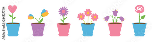 Fotografia Flower pot set line