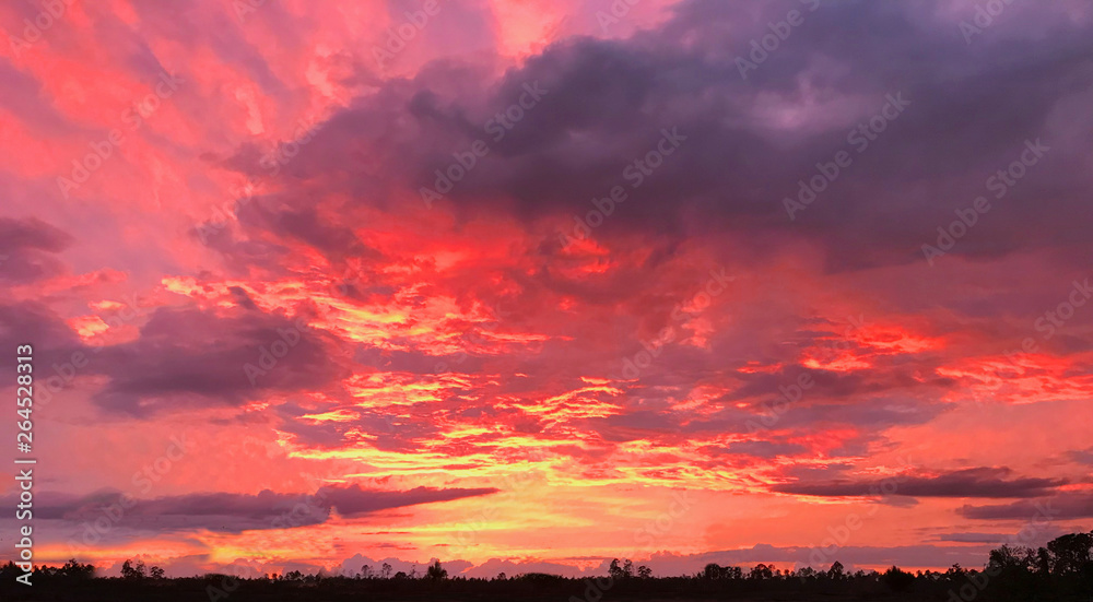 Fototapety, obrazy: Sunset in Red and Yellow sky. Photo image