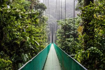 Fototapeta Do salonu Ponte sospeso tra la foresta in un parco in Costa Rica