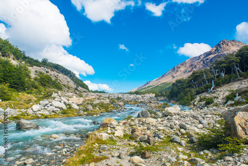 Mountain brook in the national park Los Glaciares