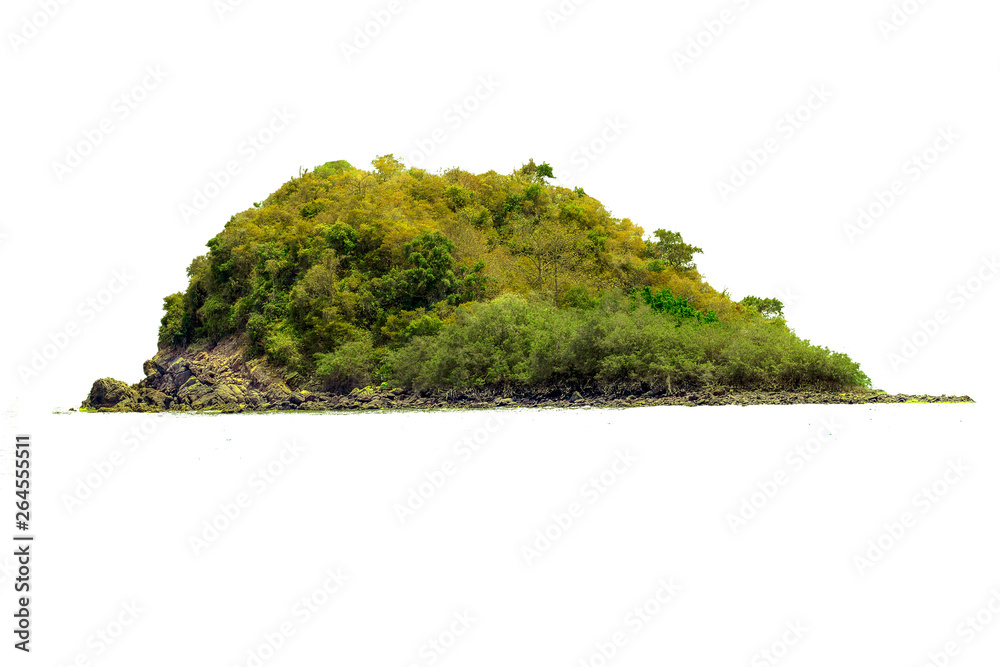 Fototapety, obrazy: The trees on the island and rocks. Isolated on White background