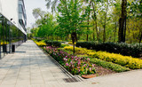 Beautiful flowers and trees near modern building