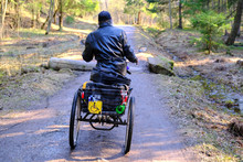 A Homeless Man In A Wheelchair Rides On A Forest Road. The Three-wheeled Wheelchair Is Equipped With A Box For Things. Silhouette On The Forest Road.