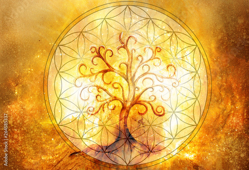 Fotomural tree of life symbol and flower of life and space background, yggdrasil