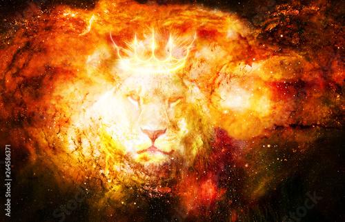 Fotografie, Obraz  lion king in cosmic space. Lion on cosmic background.