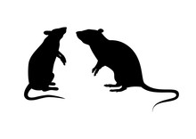 Two Rats Silhouette Vector. Standing Rat Icon Vector. Rats Isolated On A White Background. Mouse Clip Art