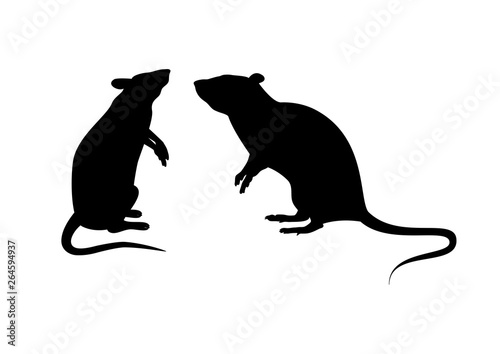 Two rats silhouette vector Canvas Print