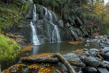 Falls In Forest Near Rock