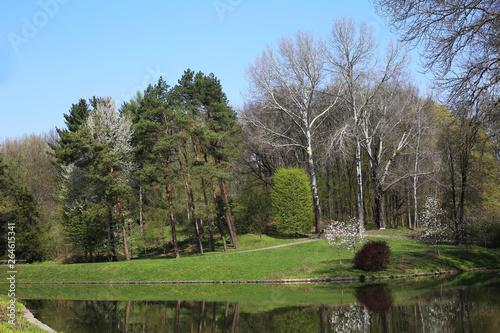 Fotografie, Obraz  Landscape from dendrology park Sofiyivka (Uman city, Ukraine)