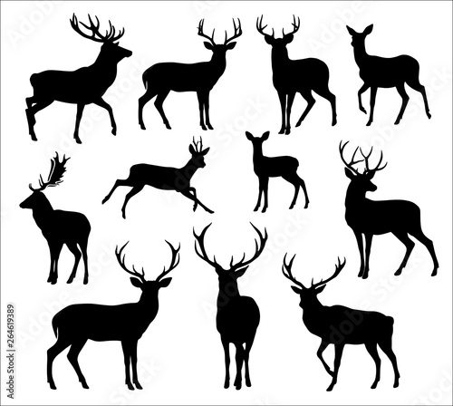 Graphic black silhouettes of wild deers – male, female and  roe deer Canvas-taulu