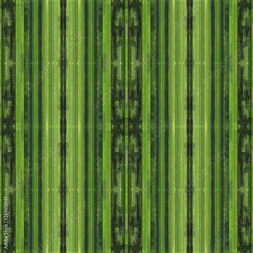 light green, green, olive green brushed background. multicolor painted with hand drawn vintage details. seamless pattern for wallpaper, design concept, web, presentations, prints or texture. #264650149