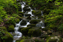 Cascade Of Water Flows Down Moss Covered Rocks In Lost Valley State Park Near Ponca Arkansas.