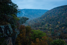 Whitaker Point Also Known As Hawksbill Crag In The Early Morning Arkansas Fog. The Misty Fog Rolls Over The Fall Colored Trees Before The Sunrise. The Unique Rock Formation Juxtaposes The Trees